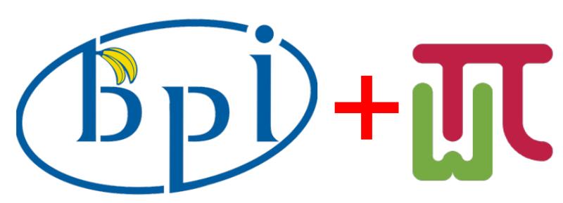logo bpi wiringpi